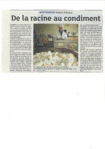 dna-15-10-14de-la-racine-aux-condiments