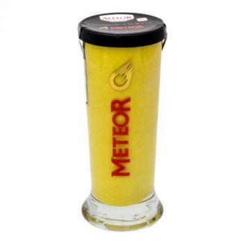 Moutarde à la Bière Meteor Galopin 150